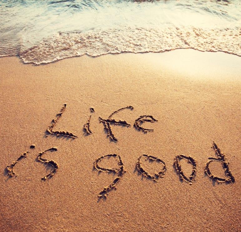 disfrutar vida