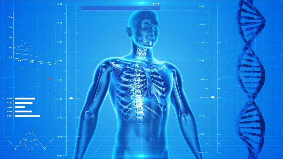 recomendaciones para prevenir con los dolores articulares en nuestro cuerpo
