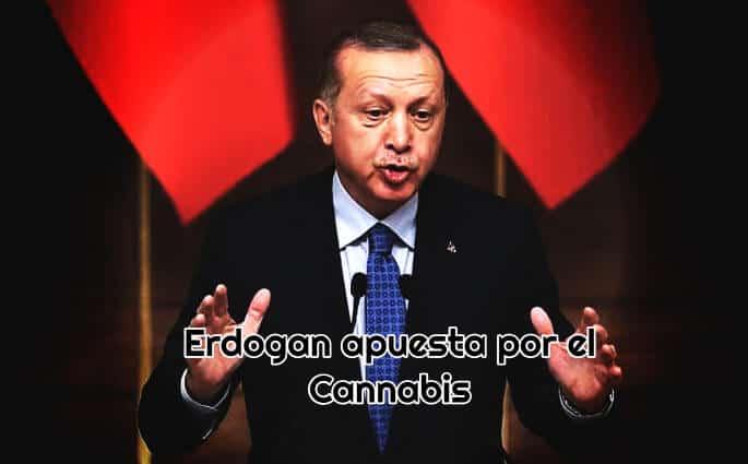 erdogan cannabis