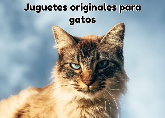 Juguetes originales para gatos